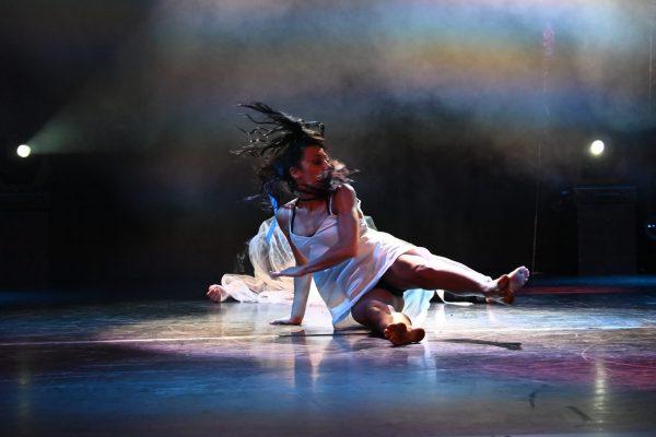 07 Ermenegildo Vio - Danza acrobatica