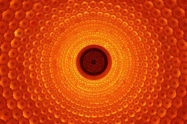 08 Luigi Xausa - Fiore artificiale