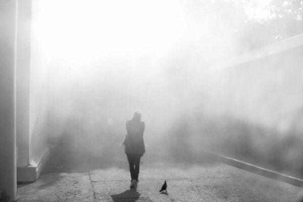 16 Luigi Biancon - Nebbia