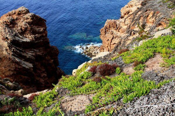 8 Renzo Zanin - Sognando ad occhi chiusi la Sardegna