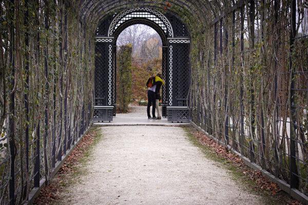 2 Ruggero Salgarella - Il giardino segreto